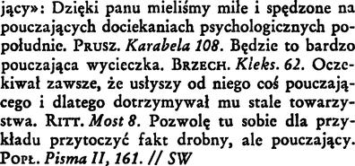 Pouczający Wielki Słownik W Doroszewskiego Pwn